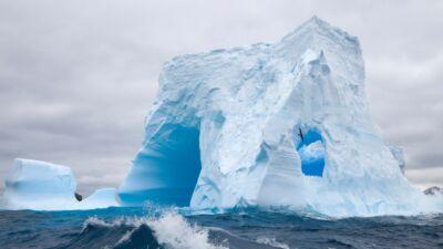 Antártida argentina Cruceros