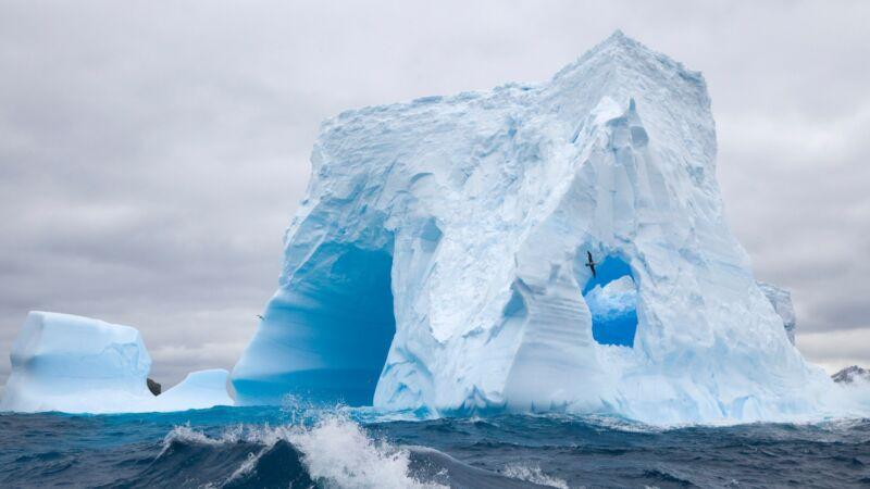 Cruceros antárticos