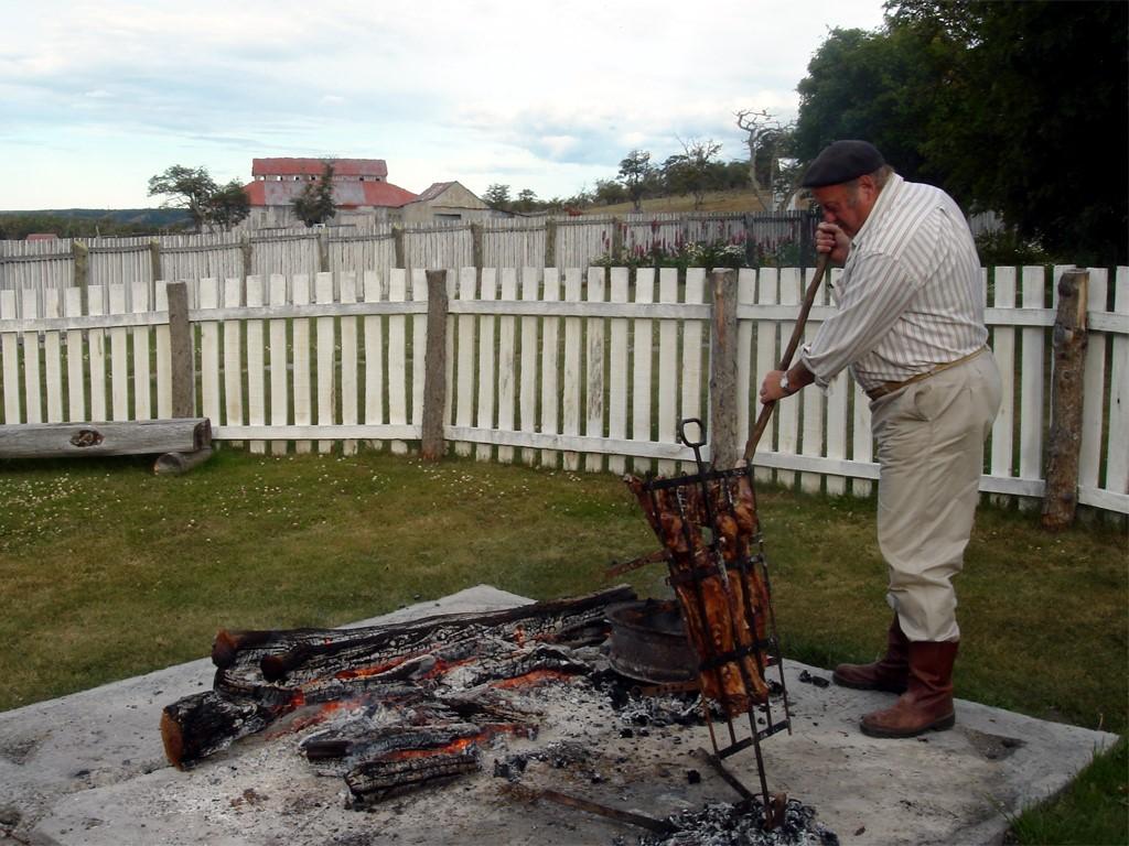Un cordero en Tierra del Fuego, Argentina