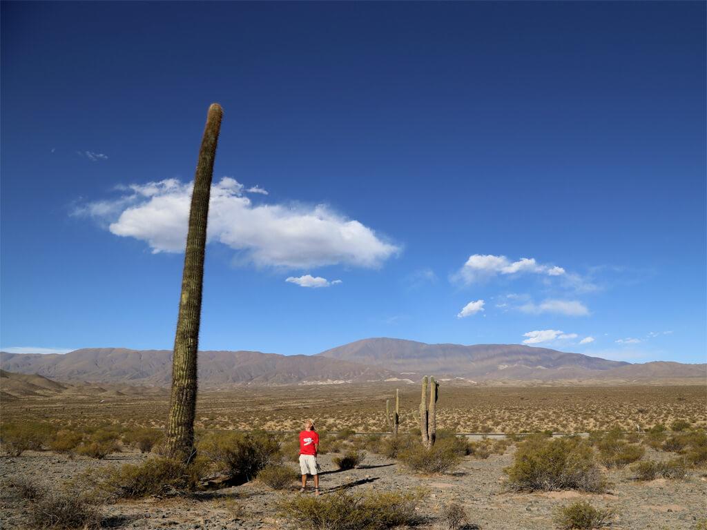 Séjours hors des sentiers battus en Argentine et au Chili