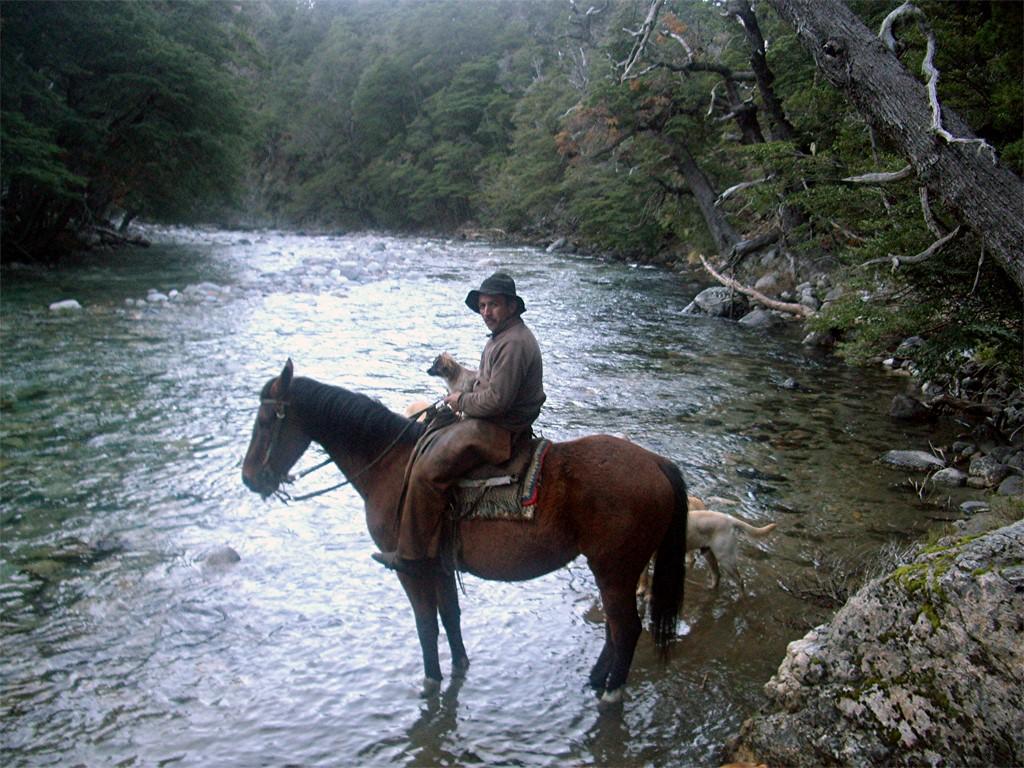 Cheval à Villa Traful en Patagonie