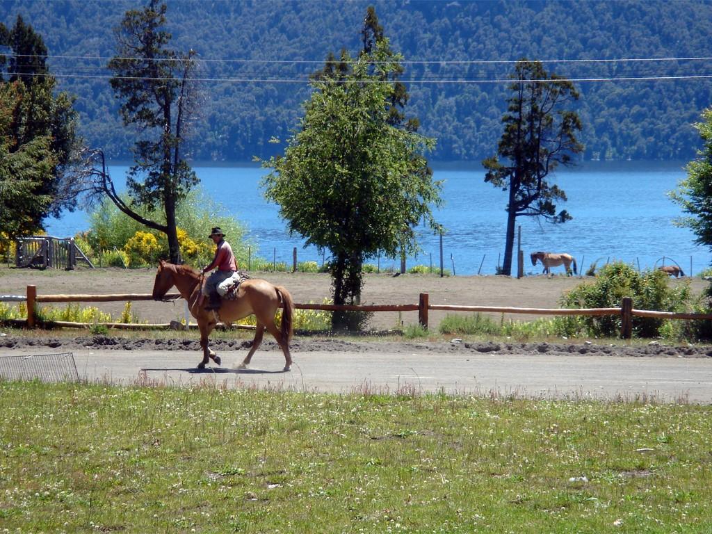 Cabalgatas en Villa Traful, Patagonia argentina