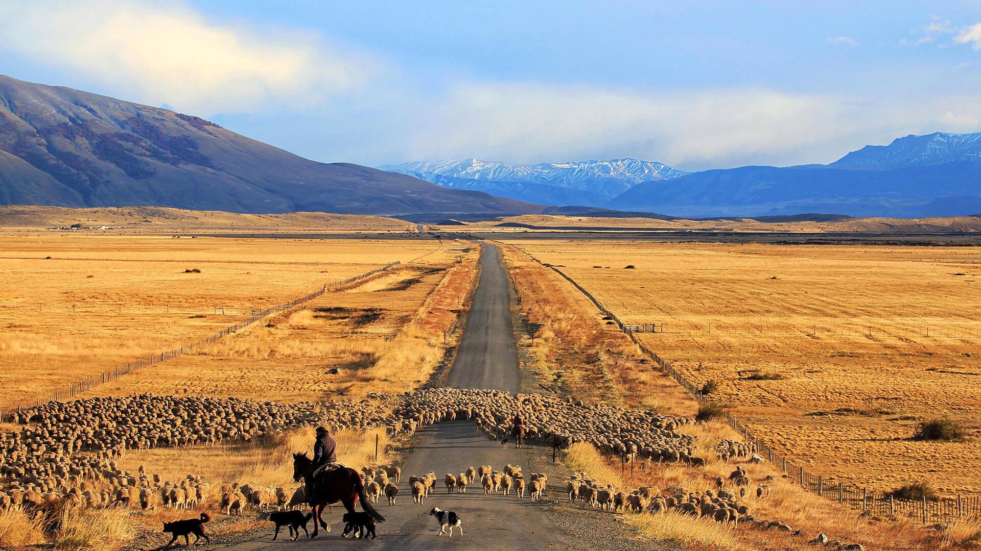 Sur les routes du Chili