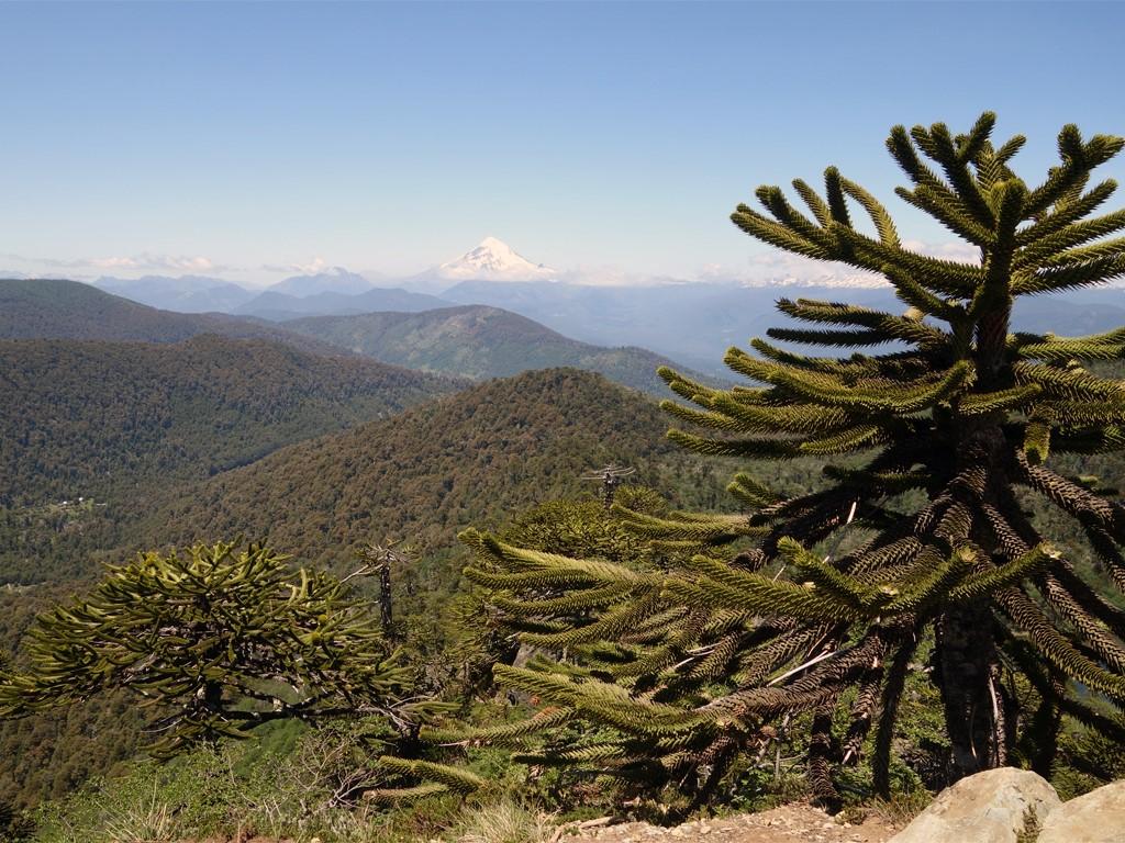 Vue sur le volcan Quetrupillan au Chili