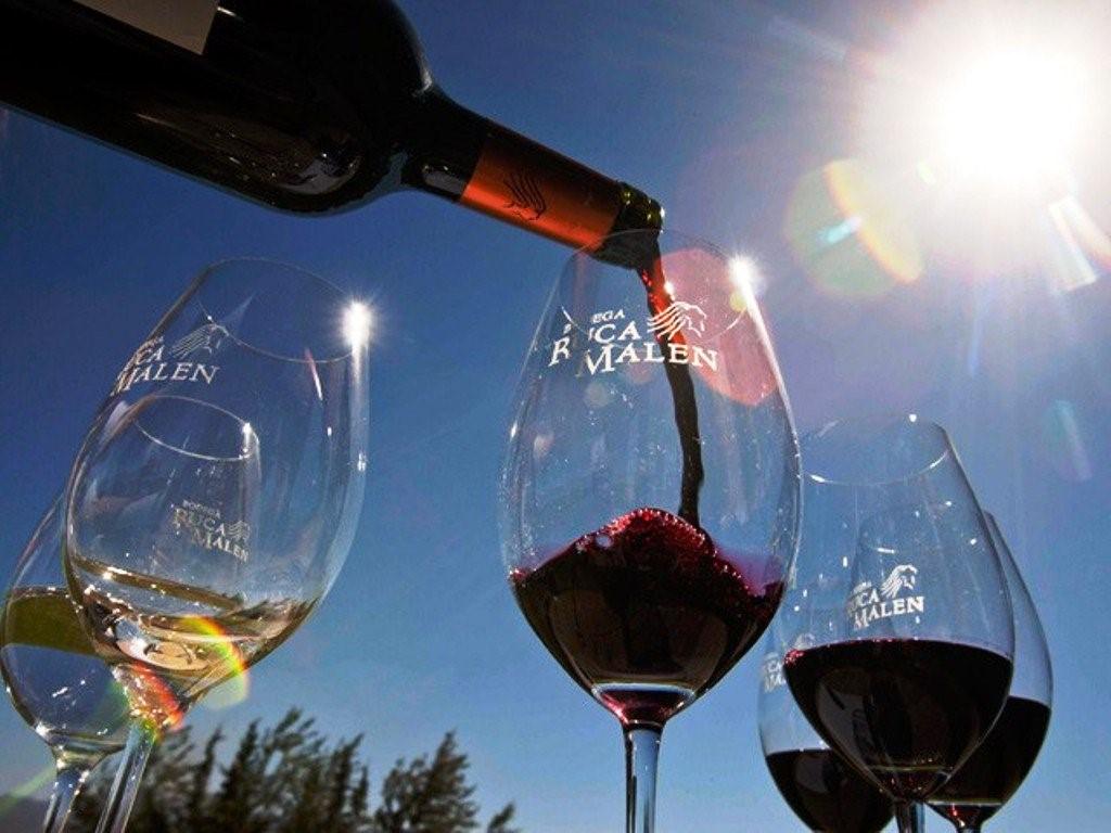 Saborear una variedad de vinos de Mendoza en Argentina