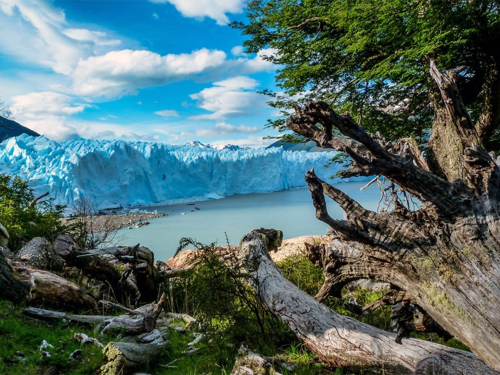 Vue sur le Glacier Perito Moreno