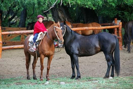 Enzo petit gaucho avec ses chevaux