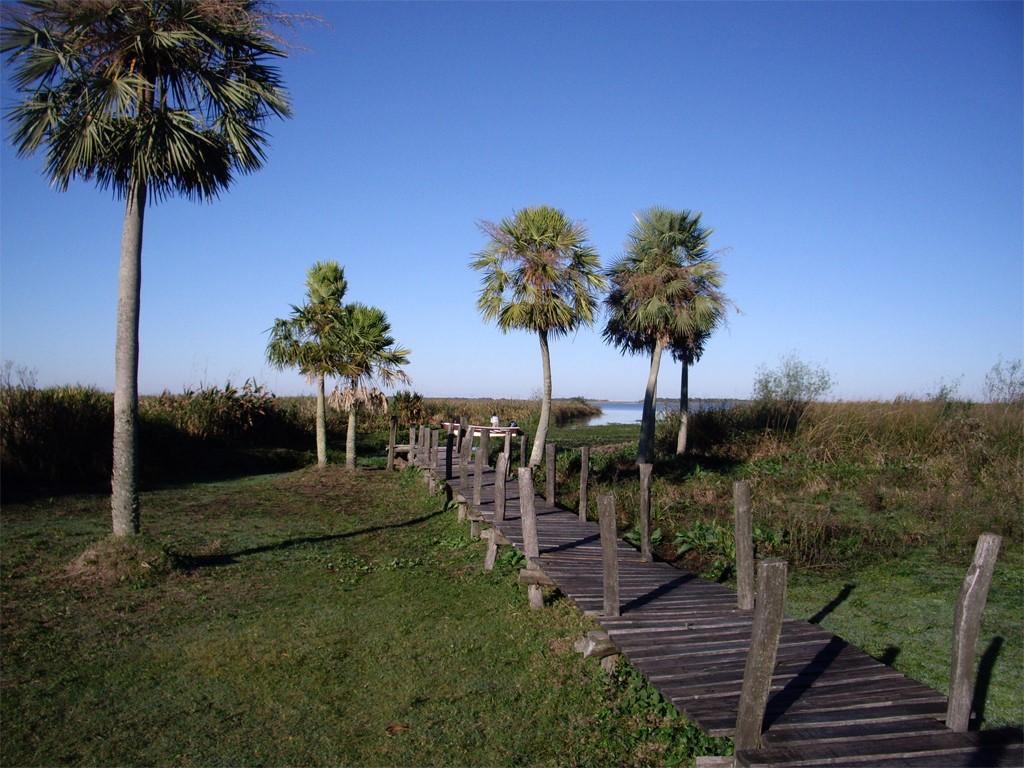 Les étangs de l'Ibera en mésopotamie argentine