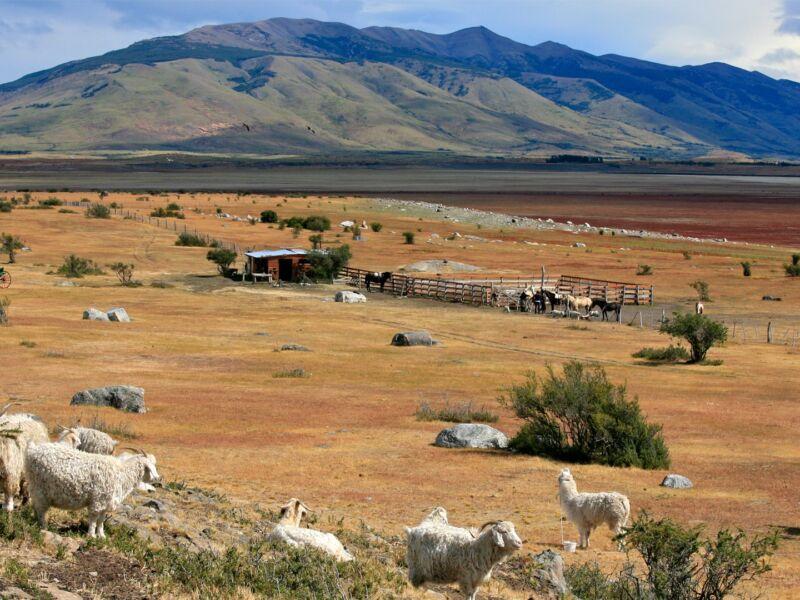 Estancia Patagonie