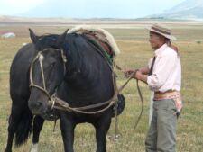 Pedro, le gaucho et son cheval en Patagonie