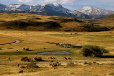 Estancia dans le Parc Torres del Paine