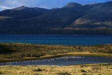Parc Torres del Paine au Chili