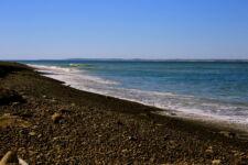 Sur les plages de Péninsule Valdes