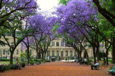 Quartier de Recoleta Buenos Aires