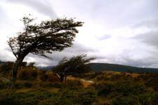 Ushuaia en Terre de Feu Argentine