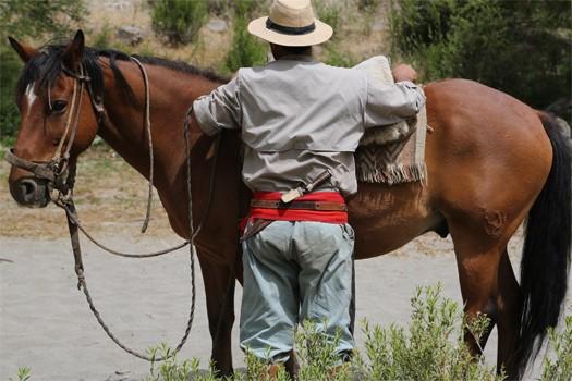 Pablo et son cheval en Patagonie