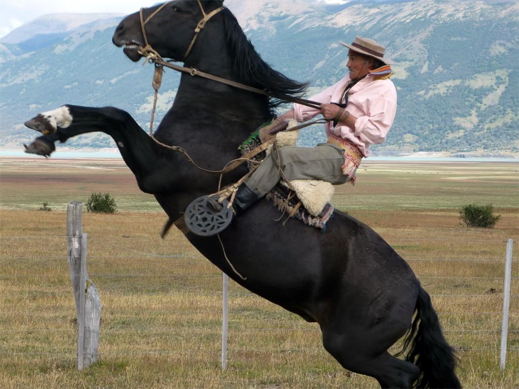 Pedro est un gaucho patagon champion de Rodéo
