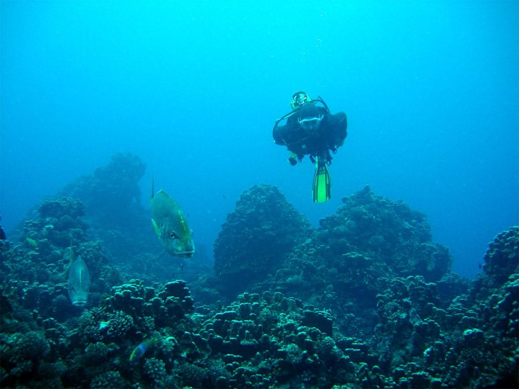 Buceo en la Isla de Pascua