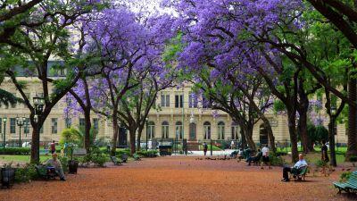 Buenos Aires y la Provincia