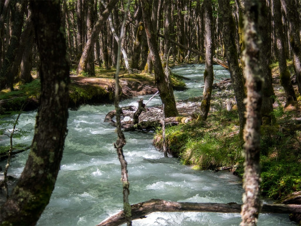 Randonnées à El Chaltén en Patagonie argentine