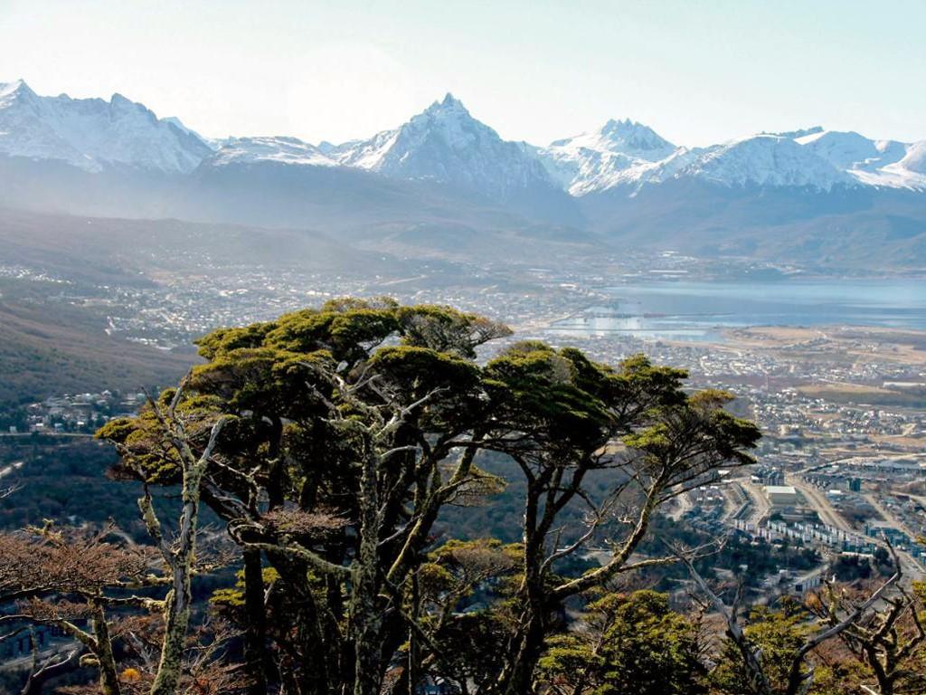 Belles forets d'Ushuaia