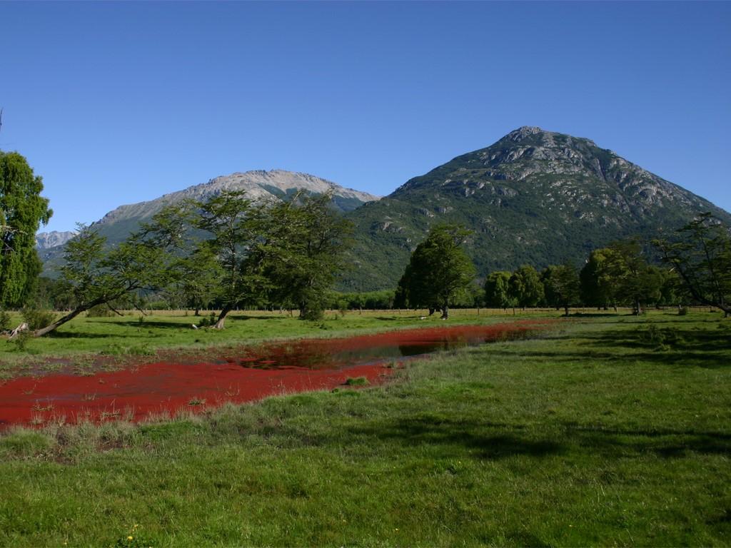 Cabalgatas en la Cordillera des los Andes