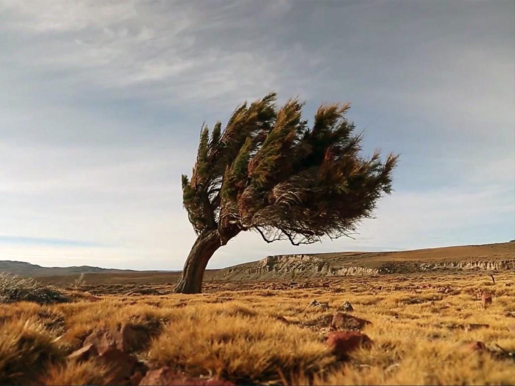 Reportage M6 sur la Patagonie & Borispatagonia