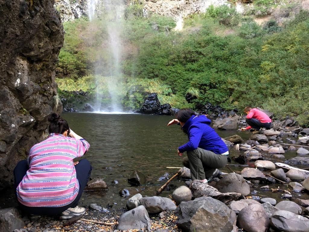 Se ressourcer en forêt et cascades de Patagonie