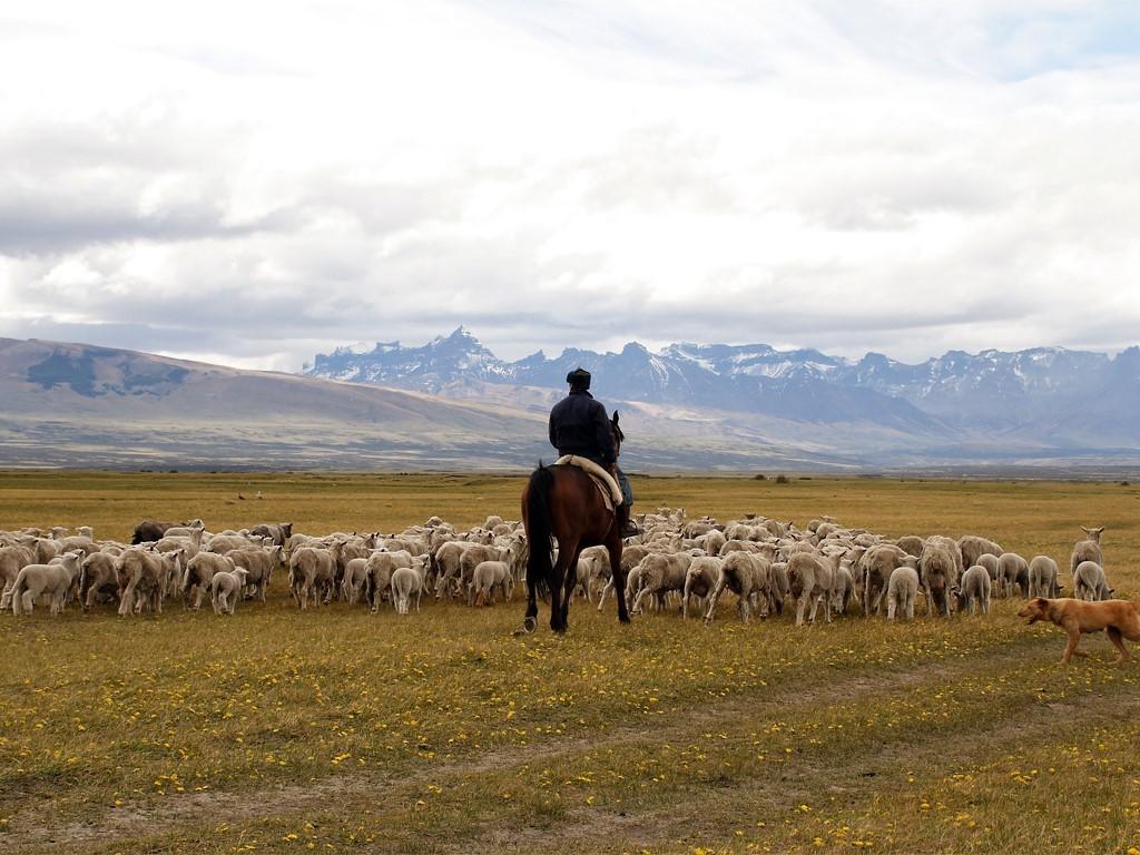 Le Sud de la Patagonie en vidéo