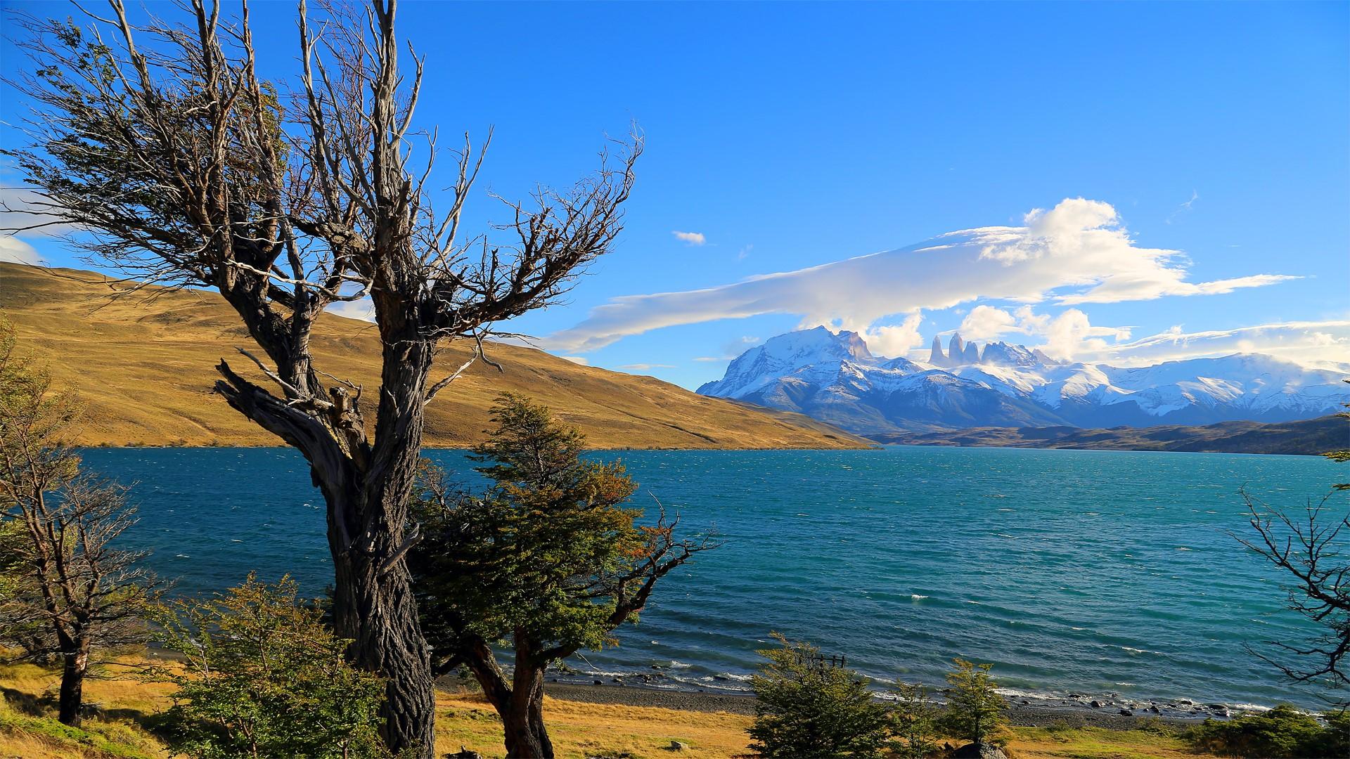 Laguna Azul au Parc Torres del Paine
