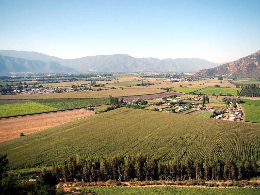 La vallée de Colchagua au Chili