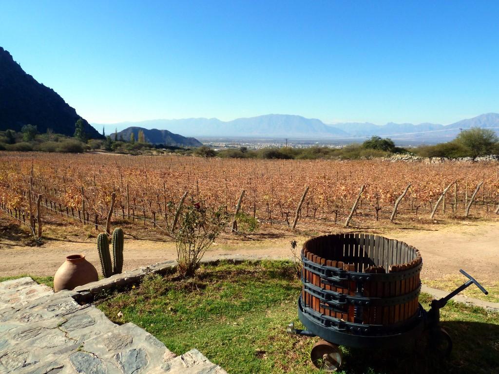 Les nouveaux vignobles du Nord Ouest en Argentine